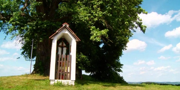 Eine Genussreise vom Almenland ins Wein- und Thermenland