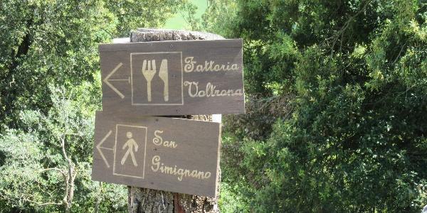 Waymarking to San Gimignano