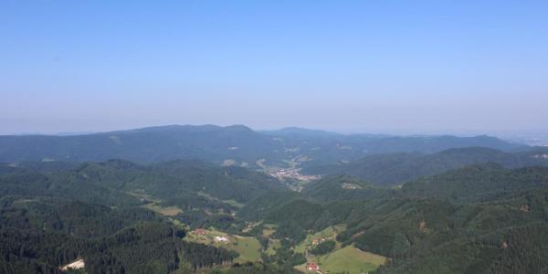 Aussicht vom Buchkopfturm
