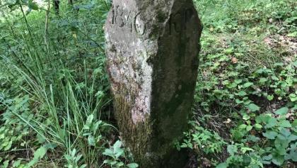 Alte Grenzsteine mit Kennzeichnung