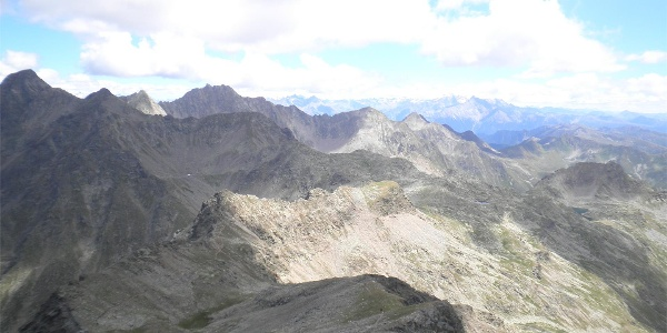 Eidechsspitze