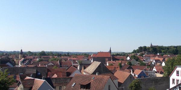 Blick auf Osthofen