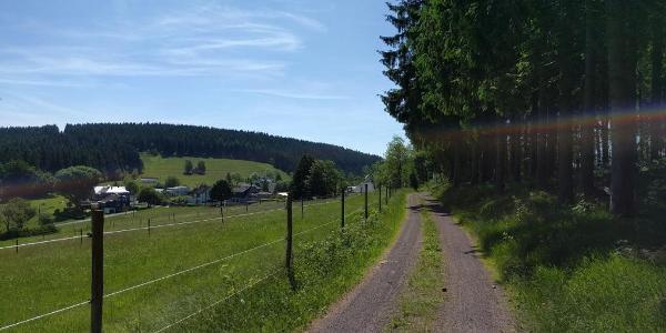 Weg Richtung Limbach
