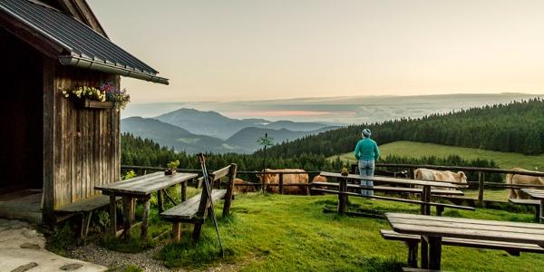 Den Ausblick von der Kranichberger Schwaig genießen