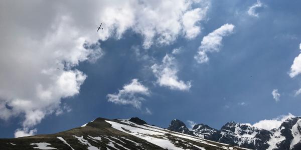 Im Anstieg zum Kamm, Blick Richtung Trettachspitze