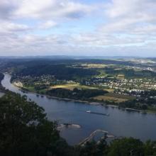 Blick vom Drachenfels zum Rhein