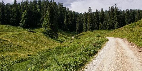 Auffahrt ins Lattengebirge