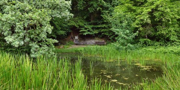 Der Friedleinsbrunnen