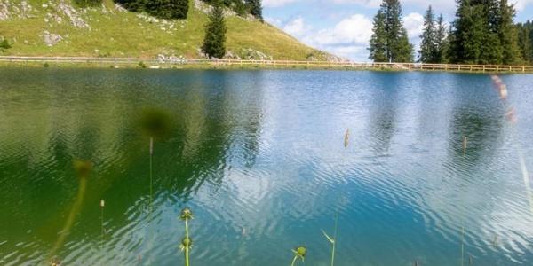 Bergsee, nur ½ Stunde vom Hochkar-Schutzhaus entfernt