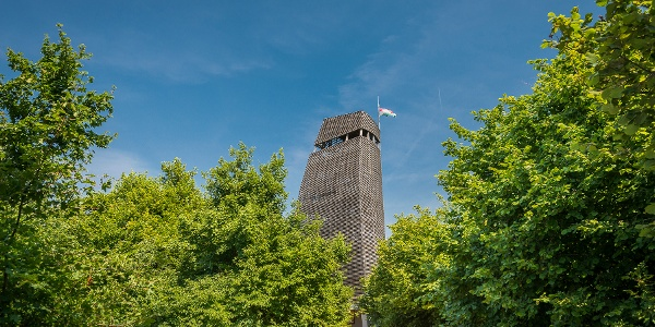 Csergezán Pál lookout tower at the wooded top of Mount Nagy-Kopasz