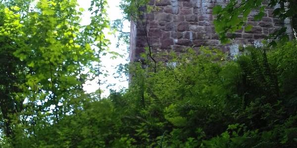 Vor dem Aufstieg zur Burg