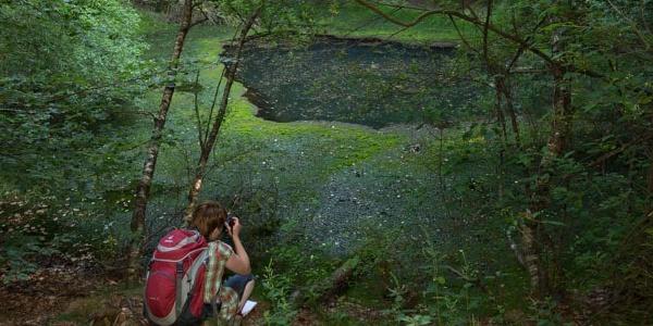 Idyllische Weiher mitten im Naturschutzgebiet