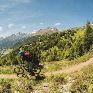 Leiterberg Trail