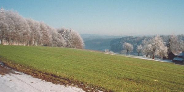 Verzuckerte Winterlandschaft im Rottanne-Gebiet