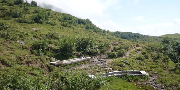 Kleine Quelle am Wanderweg