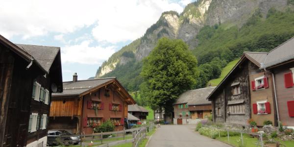 Weisstannen Oberdorf mit Dorflinde