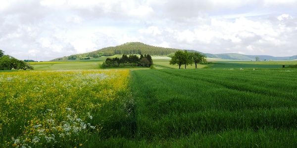 Blick auf den Himmelberg