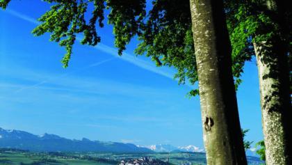 Paysage bucolique de vallons et collines