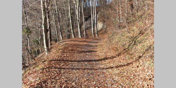 The path from Grangeneuve