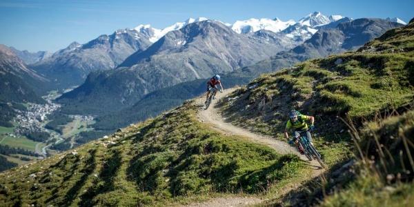Flow Trail Padella