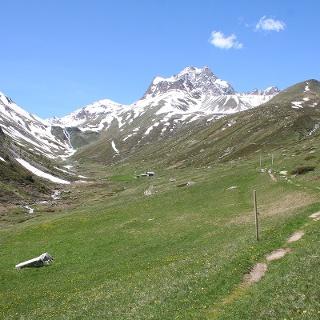 Alp Es-cha Dadaint