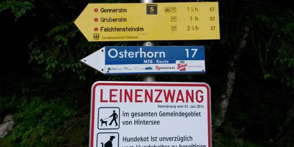 Start in Lämmerbach