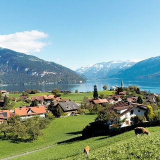 View from Faulensee