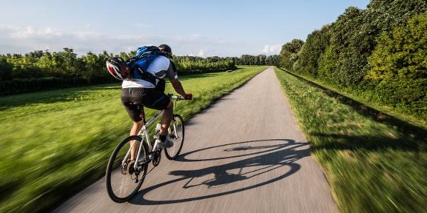 Kerékpáros az Alföldi Kéktúrán, a Gemenci erdő mentén