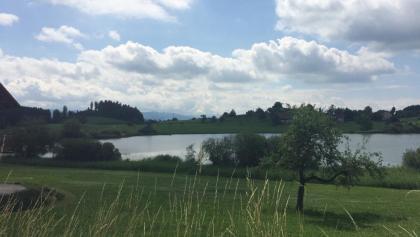 immer wieder kleine Seen
