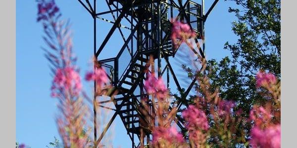 Quitmannsturm auf dem Kohlberg in Neuenrade