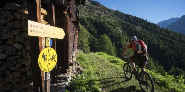 Leiterberg Trail (672)