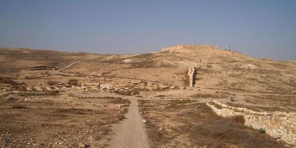 הגן הלאומי תל ערד