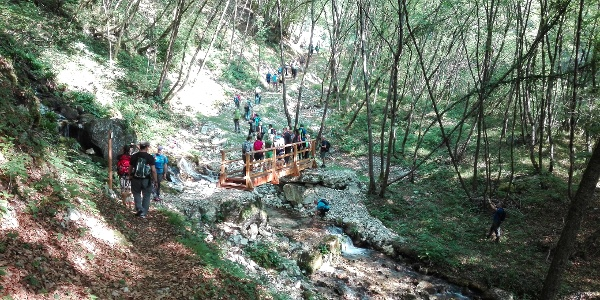 "The trail ""del Berghem"""