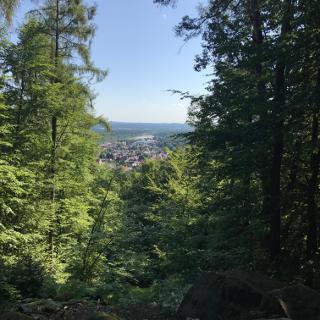 kleiner Ausblick auf Kindsbach