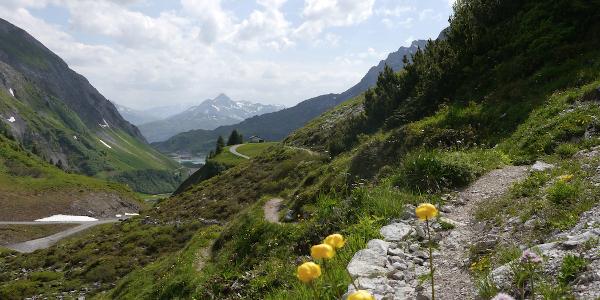 Einer der Wanderwege um die Hütte