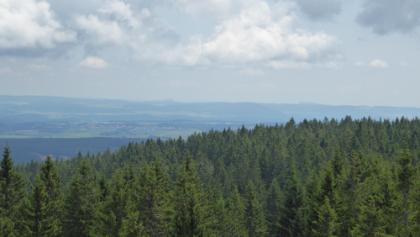 Aussicht vom Hochfirst-Turm Richtung Osten. Hohenstoffeln und Hohenhewen im Hintergrund erkennbar.