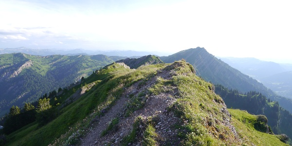 Gipfel des Buralpkopfes