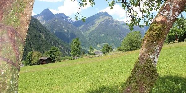 Sicht auf unsere Berge
