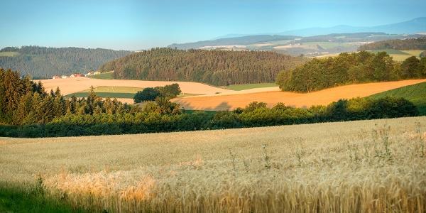 Beistein bei Wiesmath