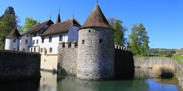 Schloss Hallwyl.