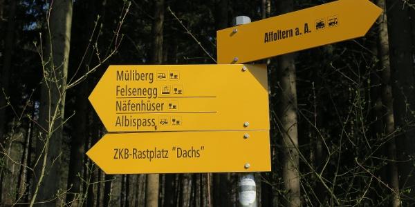 Die Wanderung ist mit gelben Wegweisern markiert.