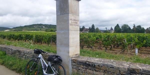 Vineyard Clos