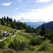 Latschätzer Höhenweg von der Lindauer Hütte talauswärts.