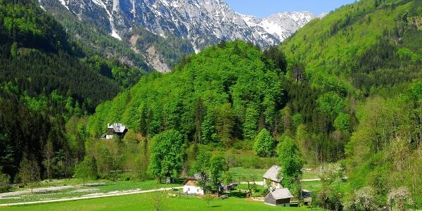 Bodinggraben Sengsengebirge