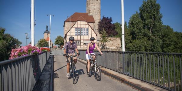 Neckartal-Radweg bei Lauffen