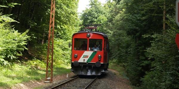 """Ein besonderes Schmankerl ist die Rückfahrt entlang der Landesbahn (""""Dschungelexpress"""")."""