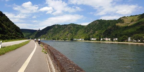 Rheinradweg bei St. Goar mit Blick auf Burg Maus