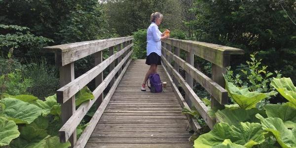 Bridge Walkway En Route to Pitlochry
