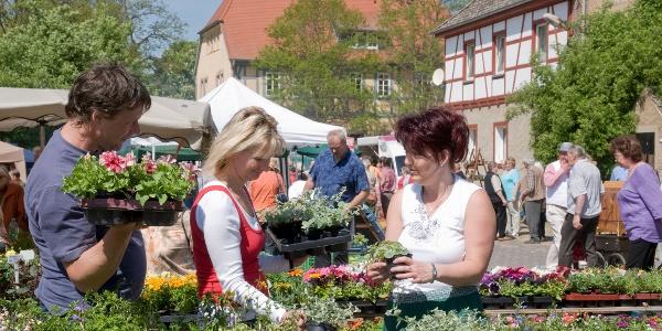 Bauernmarkt Braunsroda