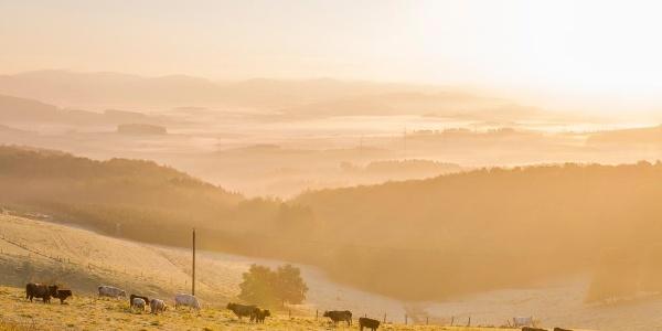 Blick auf die Ferienregion Eslohe